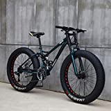 AISHFP 26 Pulgadas Fat Tire Bicicleta Todo Terreno, Motos de Nieve Beach, Doble Freno de Disco del Crucero de Bicicletas, Marco Ligero Acero de Alto Carbono,Verde,24 Speed