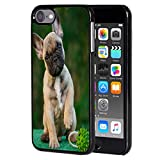 iPod Touch 6 Case,French Bull Dog Anti-Scratch Shockproof Black Hard Plastic Protective Case Cover for Apple iPod Touch 6