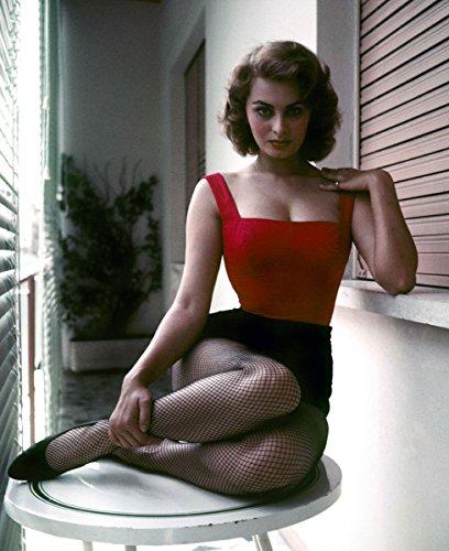 Sophia Loren Fishnet Stockings Photo Art Hollywood Movie Star Photos Artwork 8x10