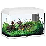 AQUARIUM AQUASTART 55 LED BLANC 57 LITRES