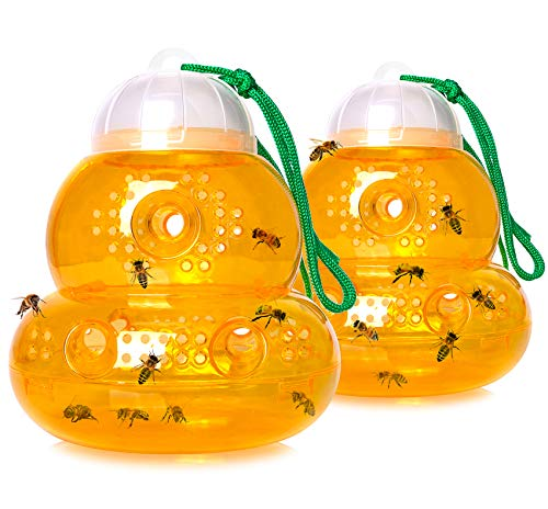 Stingmon 2 Pack Wasp Trap for Hornet Bees Yellow Jackets, Insect Bee Catcher Non-Toxic, Reusable, Hanging Outdoor Wasp Deterrent Killer