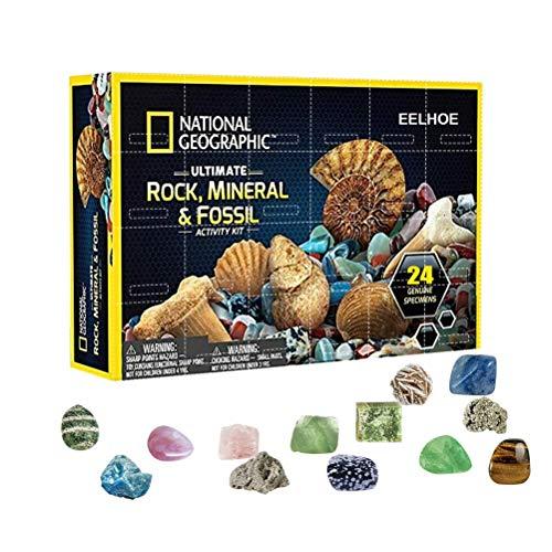 YEKKU Kinder Rock Mineral Gem Collection Geschenkbox Mega Gemstone Kit Frühpädagogisches Spielzeug Geografische Felsen Fossilien Edelsteine Kit,Hochwertiges Kunststoffmaterial