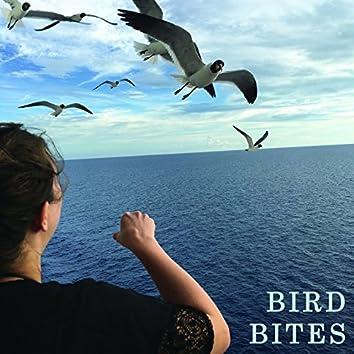 Bird Bites
