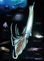 深海プロジェクト 300ラージピース 未知の世界 300-L362