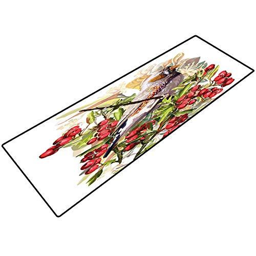 Rowan Door Mat Colorful Bird Flower and Rowan Shrubs on White Backdrop Artistic Display Botanical Comfort Mat for Kitchen Floor Standing Desk Rugs 24x70 Inch