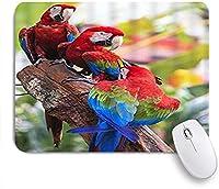 GUVICINIR マウスパッド 個性的 おしゃれ 柔軟 かわいい ゴム製裏面 ゲーミングマウスパッド PC ノートパソコン オフィス用 デスクマット 滑り止め 耐久性が良い おもしろいパターン (ブランチの野生動物の自然に動物のオウムのとまり木)