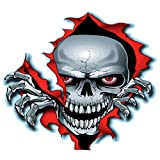 EROSPA® Aufkleber KFZ Auto Motorrad - Skelett Knochen Schädel - Car-Sticker