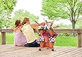 Immagine 2 bama vaso trifoglio