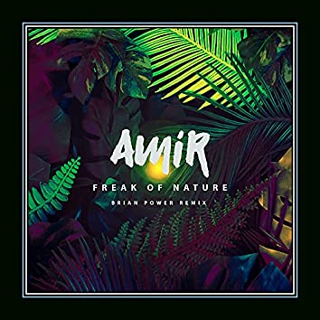 Freak of Nature [Brian Power Remix]