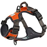 Embark Adventure Dog Harness, Easy On and Off with Front and Back Leash Attachment Points & Control Handle - No Pull Training, Size Adjustable and No Choke (Large - Orange)