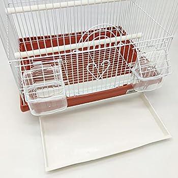 BPS BPS-1232 Cage pour oiseau pour oiseau journalier avec mangeoire pour bébé/salade Couleur au hasard