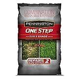 Pennington GL61100520287 100524436 Bermuda Seed Grass Plants, 30 LB