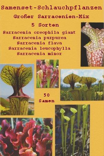 TROPICA - Samenset-Schlauchpflanzen (Sarracenia-Mix) -50 Samen
