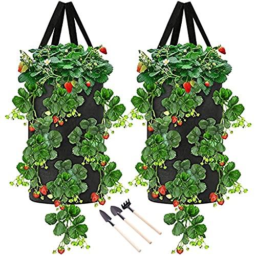 bangyao 2Pcs Macetas Para Fresas Jardinera Vertical Material No Tejido Espesado Con Asa Puede Cultivar Fresas, Patatas, Tomates, Etc(Rojo, Verde, Negro)