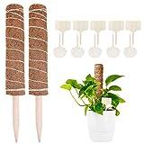Sunshine smile 2 Pcs Pflanzstab Kokos,Rankstab Rankhilfe Blumenstab mit 10 Holzetiketten für Pflanzenname, Kokosstab Stützpfahl Holz aus Natürlicher Kokosfaser zur Dekoration Verlängerbar