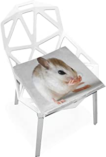 Seat Cushion Smart Mouse Chair Cushion Offices Butt Chair Pads Square Wheelchairs Mat for Student