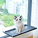 PAKEWAY Cat Window Perch Hammock Cat Bed with Upgraded Version 4 Suction Cups, Safest Cat Bed for Large Cat can Holds Up to 50lbs (Black)