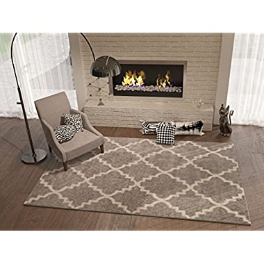 Grey Silver 5x8 ( 5'3  x 7'3  ) Area Rug Trellis Morrocan Modern Geometric Wavy Lines Area Rug Living Dining Room Bedroom Kitchen Carpet Contemporary Soft Plush Quality