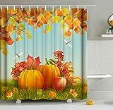 ShineSnow Erntedank-Duschvorhang-Set, Motiv Herbstkürbis, Apfel, Libelle, 152 x 183 cm, Heimdeko, Badezimmerzubehör, Wasserdichte Polyester-Gardinen 72