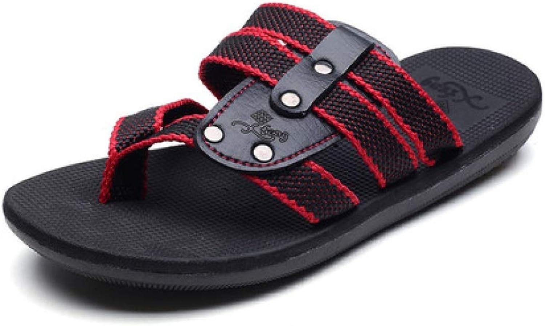 TD L9085 Beach Sand Drag Sandals Non-slip Breathable Men (color   B, Size   EU42 UK8.5 CN43)