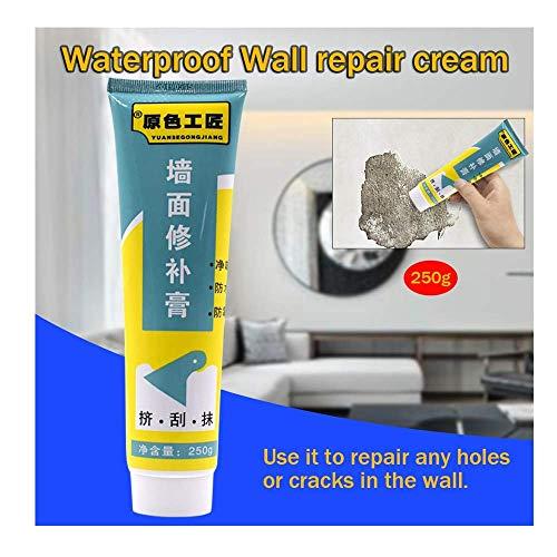 250g Universelle Wasserdicht Wandreparatursalbe Wandreparaturcreme Ausbessernde Salbe,White Wall Crack Repair Cream Waterproof Non-Corrosive Paste Mending Ointment für Flur, Badezimmer (250g, Weiß)