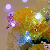 HDNICEZM Hummingbirds Decorative String Lights ,14.1 Ft 40 LED Battery Powered Waterproof Silver Copper Wire Springtime Theme Fairy Lights for Indoor Outdoor Decoration Project(Cold White, Timer)