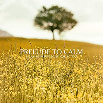 Prelude to Calm: Relaxing Nature Music Collection