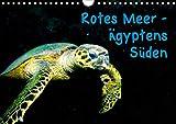 Rotes Meer - Ägyptens Süden (Wandkalender 2021 DIN A4 quer)