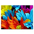 Purple Verbena Art Colorful Sunflower Print on Canvas Wall Art Multicolor Flower Picture Wall Art Modern Artwork for Home Decor(12x16 Inch,Framed)
