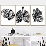 TWTQYC Human Heart Medical Anatomy Posters and Print Black White Pictures Brain Lung Wall Art Canvas Painting Doctor's Office Decor|40x60cmx3Pcs/No Frame
