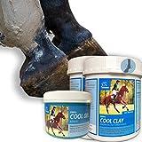 argilla cavallo + gel refrigerante set I balsamo cavallo + arnica I argilla acetica normale + doping free pasta di guarigione I unguento refrigerante I tendine muscolare 2 * 1,5 Kg + 500 ml