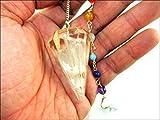 Jet Selenite Orgone Péndulo de 2 pulgadas Jet International Crystal Therapy Folleto curativo Poder Paz, Prosperidad, La imagen divina de piedra preciosa es sólo una referencia