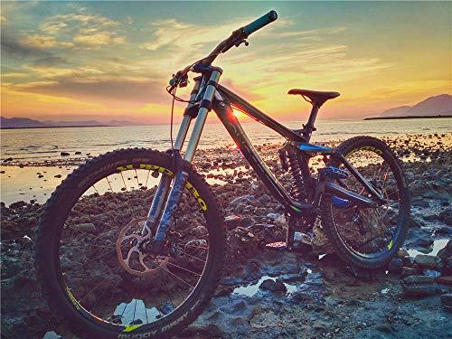 Rompecabezas De Bricolaje para Adultos 1000 Piezas Bicicleta De Montaña Estacionada En El Suelo para Amigo Regalo De Cumpleaños Familiar para Niños