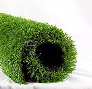 ALTRUISTIC Premium Artificial Drainage Holes & Rubber Backing Synthetic Extra-Heavy & Soft Pet Turf Fake Grass for Dogs or Outdoor Décor, 5.5ft x 6.5f (35.75 Square ft), Green
