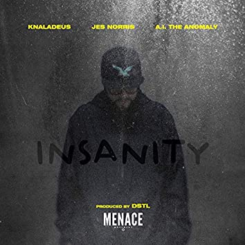 Insanity (feat. A.I. The Anomaly, Jes Norris)