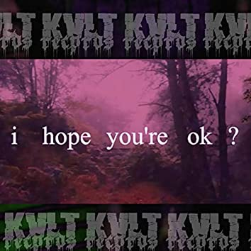 I Hope You're Ok?