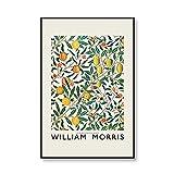Carteles e impresiones del Museo de William Morris con patrón de flores de frutas vintage, cuadro artístico de pared, pintura en lienzo sin marco familiar C 40x60cm