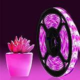 JUNJUN Toque USB Planta De Espectro Completo Crecimiento Luz Impermeable A Prueba De Agua Vegetales Y Frutas Luz De Plantación De Frutas(Color:2M)