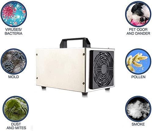 YITIAN Generador De Ozono 10G / H Purificador