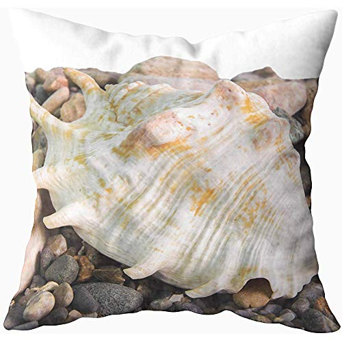 Ducan Lincoln Pillow Case 2PC 18X18,Weiche Kissenbezüge,Quadratische Kissenbezüge Shell Conch Shell Ocean Sea Stones Pebbles Shore Weißer Hintergrund A Both Sides Cushion