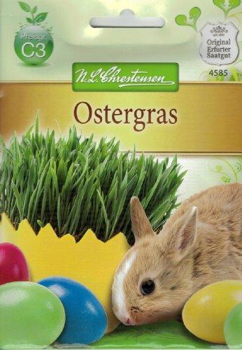 Chrestensen Ostergras Gras Ostern Rasen