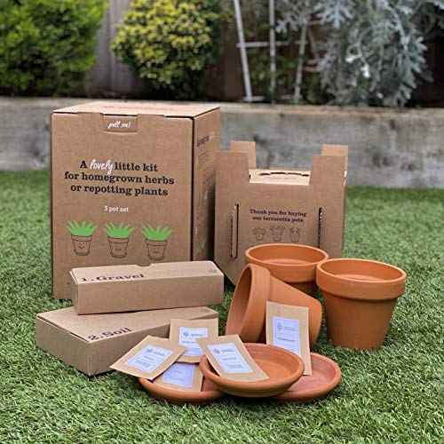 Grow-Your-Own-Herbs-Kit-at-Home-Herb-Garden-Kit-Terracotta-Herbs-Company-Seed-Potting-Kit-Sustainable-Gift-Includes-3-Pots-and-Saucers-6-Types-of-Seeds-Potting-Soil-and-Gravel