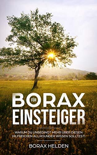 Borax Für Einsteiger: Warum Du unbedingt mehr über diesen hilfreichen Allrounder wissen solltest - Wirkung, Anwendung, Erfahrungsberichte und Studien