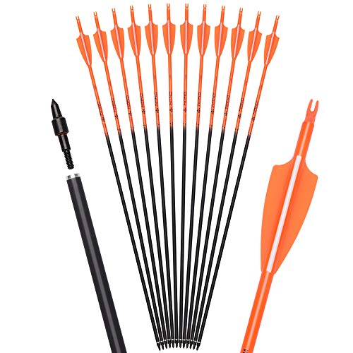 Archey World 28 30 Inch Carbon Arrow Targeting and Practice and Hunting Arrows for Youth Adults Compound Recurve Long Bow with Removable Tips