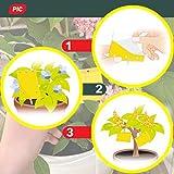 Zoom IMG-1 pic 40 piccoli adesivi gialli