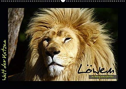 Welt der Katzen - Löwen (Wandkalender 2020 DIN A2 quer): Kalender mit 12 stimmungsvollen Löwenaufnahmen aus Zoologischen Gärten (Monatskalender, 14 Seiten )
