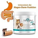 Ida Plus - amerikanische Ulmenrinde - Slippery Elm Bark Pulver für Hunde & Katzen - Naturprodukt - Unterstützt Magen-Darm-Trakt & eine ausgewogene Darmflora - mit Vitaminen & Mineralstoffen 50 g