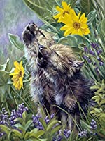 DIYペイント 数字 キャンバス油絵 DIY絵 デジタル油絵 動物のオオカミ-16x20インチ(diyの木製フレーム)