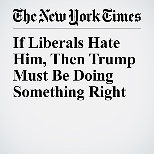 If Liberals Hate Him, Then Trump Must Be Doing Something Right audiobook cover art