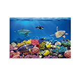 QWDAS Aquarium Unterwasserwelt Fisch Schildkröte